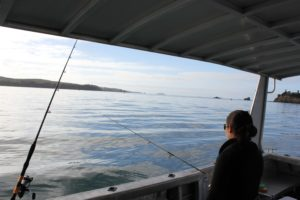 Individual Fishing Charters Auckland