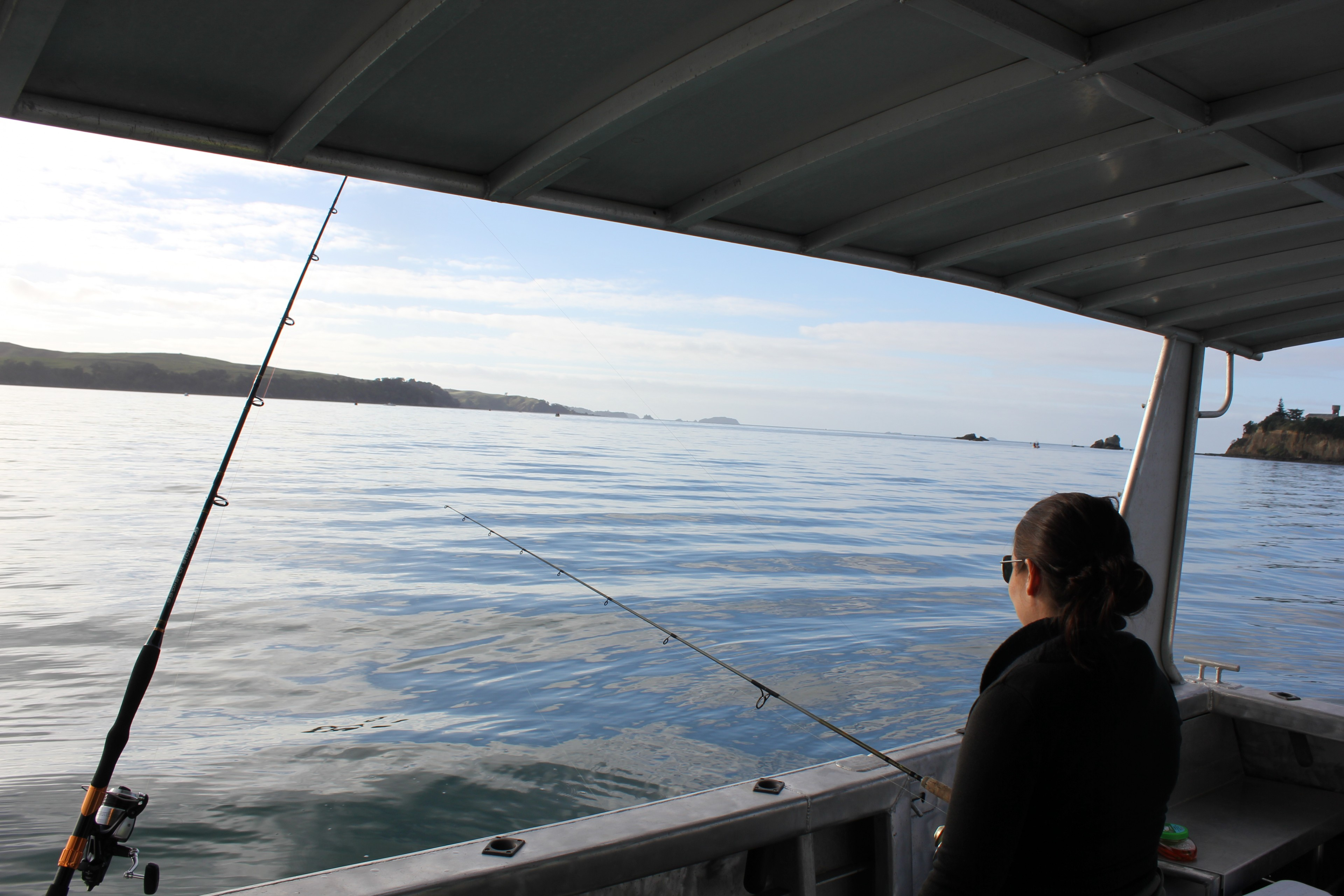 Individual fishing charters auckland from just 100 each for Fishing charters auckland