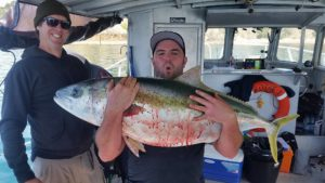 Kingfish Fishing Charters Auckland